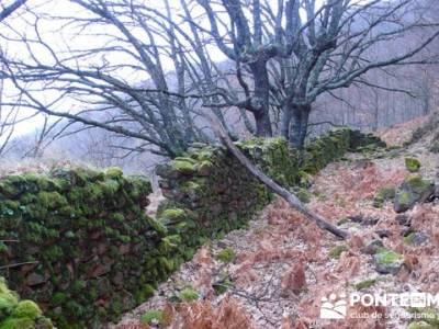 El Valle del Ambroz y la Judería de Hervás - Hervás PR-CC 36 La Chorrera;informacion sobre el tej
